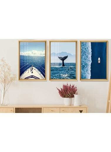 Çerçeve Home  Aquatic Life And Travel Natural Çerçeve Tablo Seti Renkli